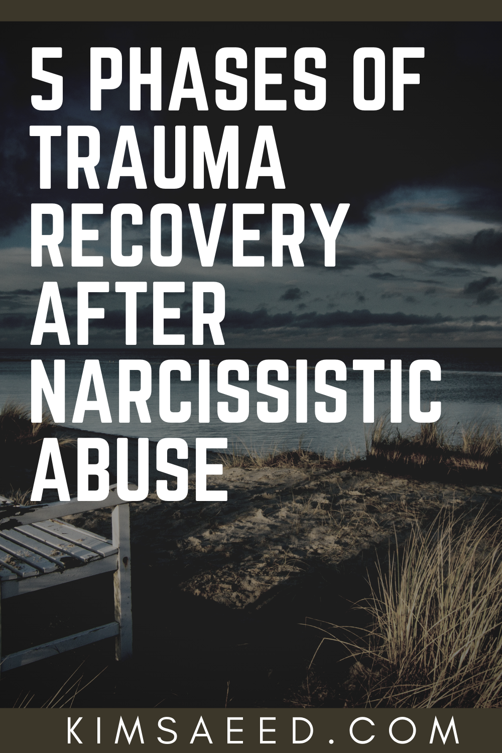Working The 5 Phases of Trauma Recovery After Narcissistic Abuse - Kim Saeed: Narcissistic Abuse Rec