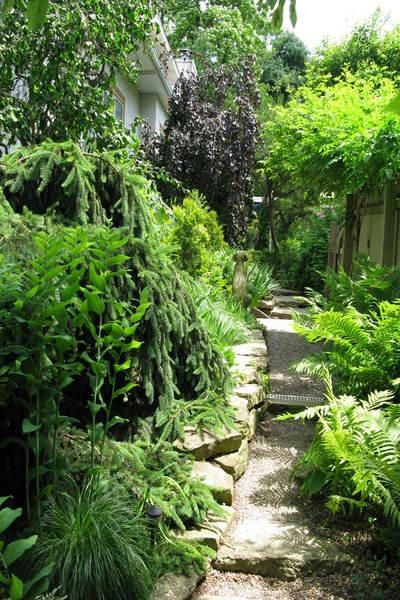 Garden design solutions for improving side yards for Garden design solutions