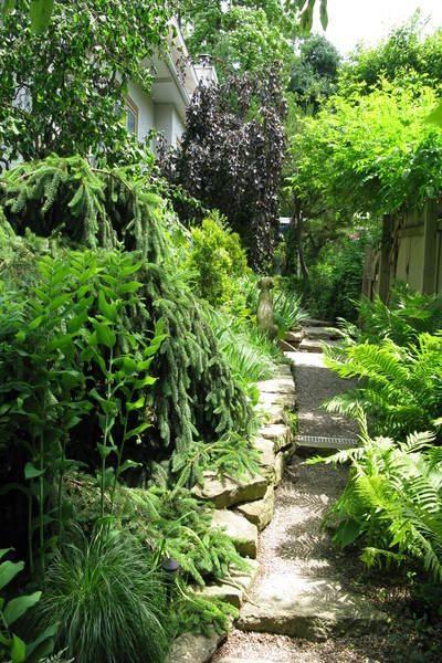 Garden design solutions for improving side yards for Garden design solutions