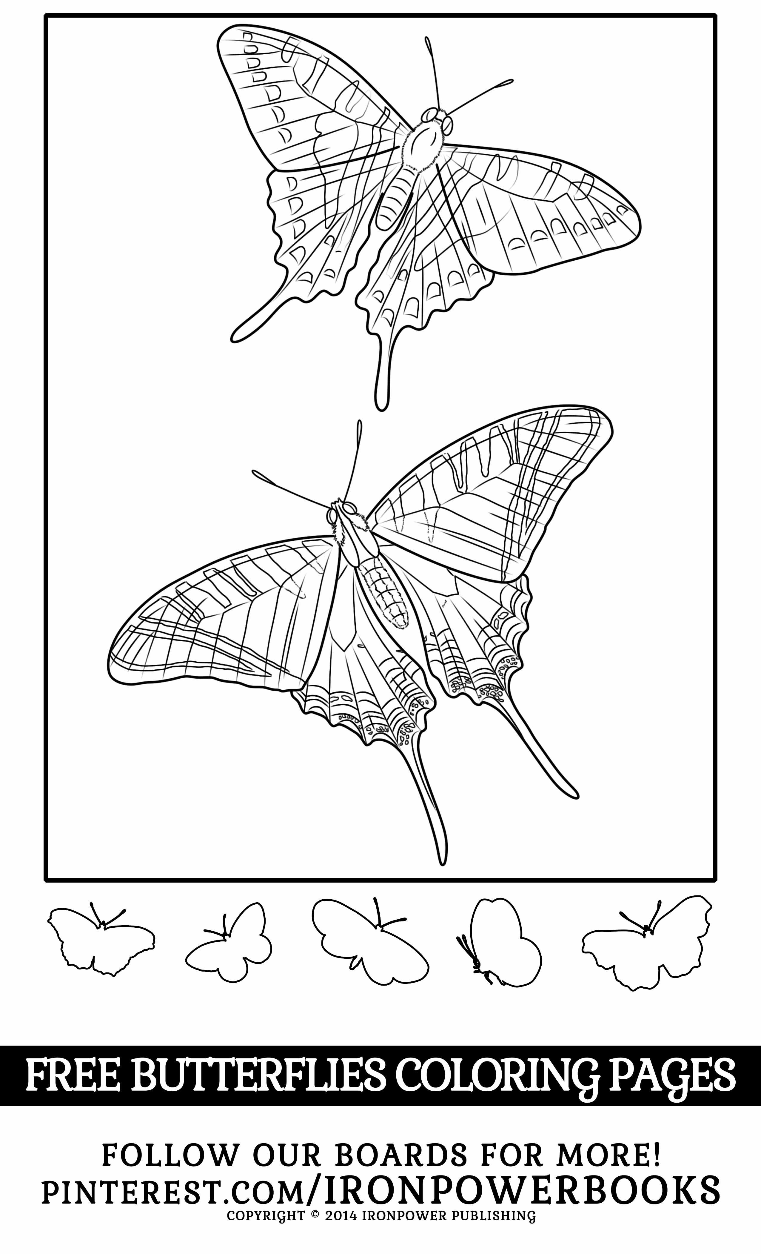 Free Butterflies Coloring Pages From The Paperback Copy At Http Www Amazon Com Butterfly Color Butterfly Coloring Page Detailed Coloring Pages Coloring Pages [ 4200 x 2550 Pixel ]