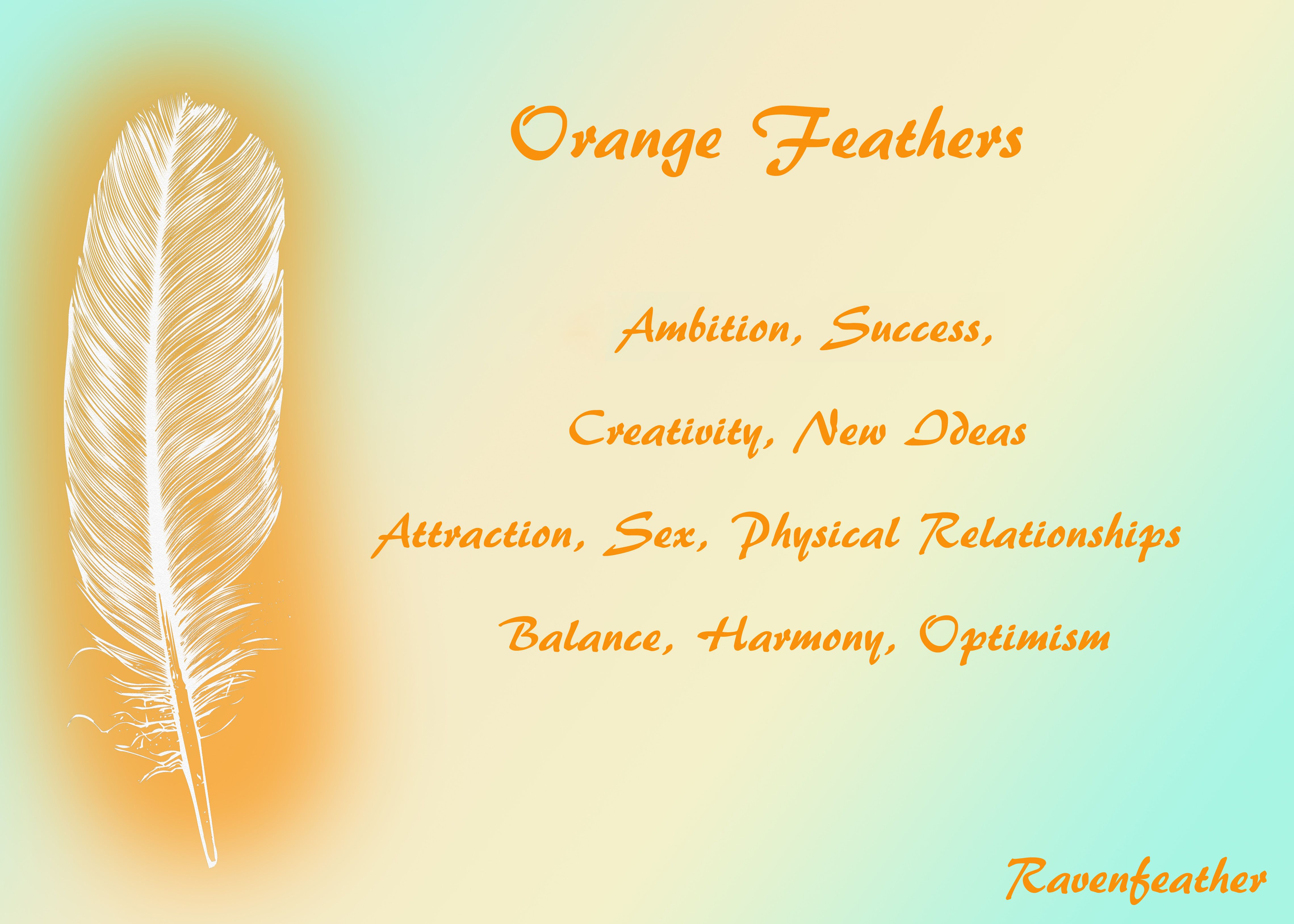 Orange Feathers With Images Feather Meaning Feather Magic