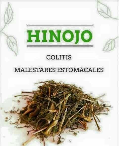 te de hierbas para la colitis y gastritis