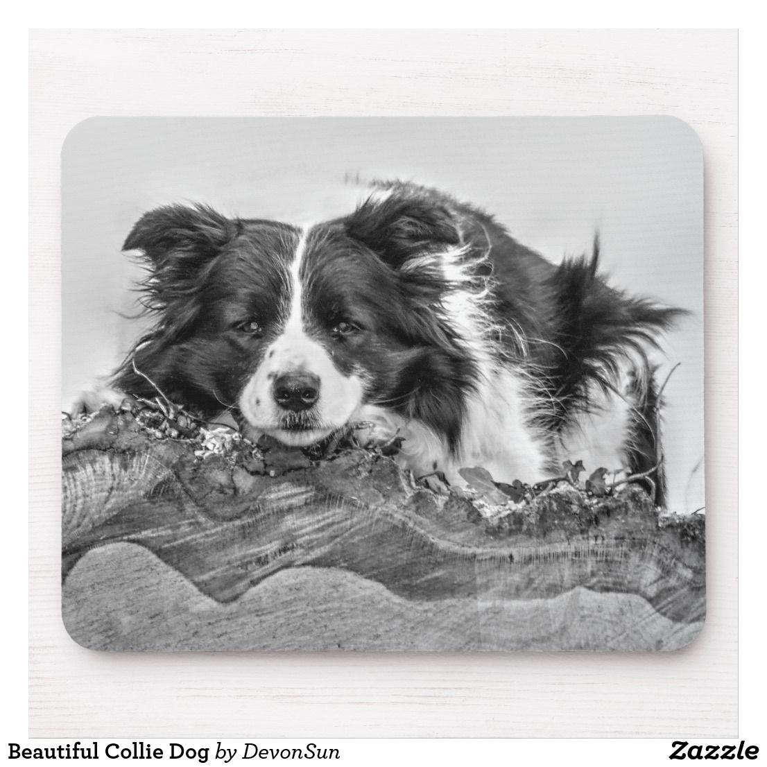 Beautiful Collie Dog Mouse Mat Zazzle Co Uk Dog Themed Gifts