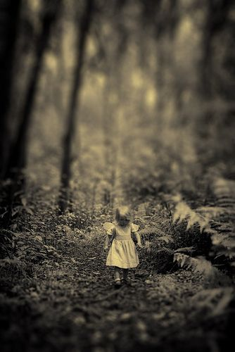 i found a fairy in the forest