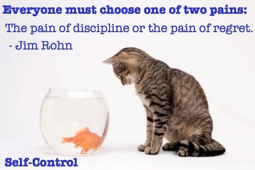 Self Control | run for it! | Self control quotes, Control quotes