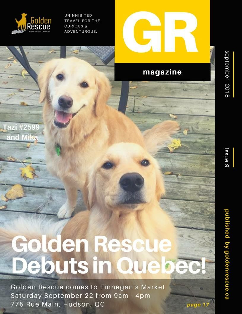 Golden Rescue Is Expanding Events Into Quebec Tazi 2599 And Mika