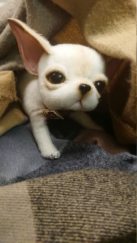 white chihuahua puppy/dog (11cm) realistic toy Chihuahua