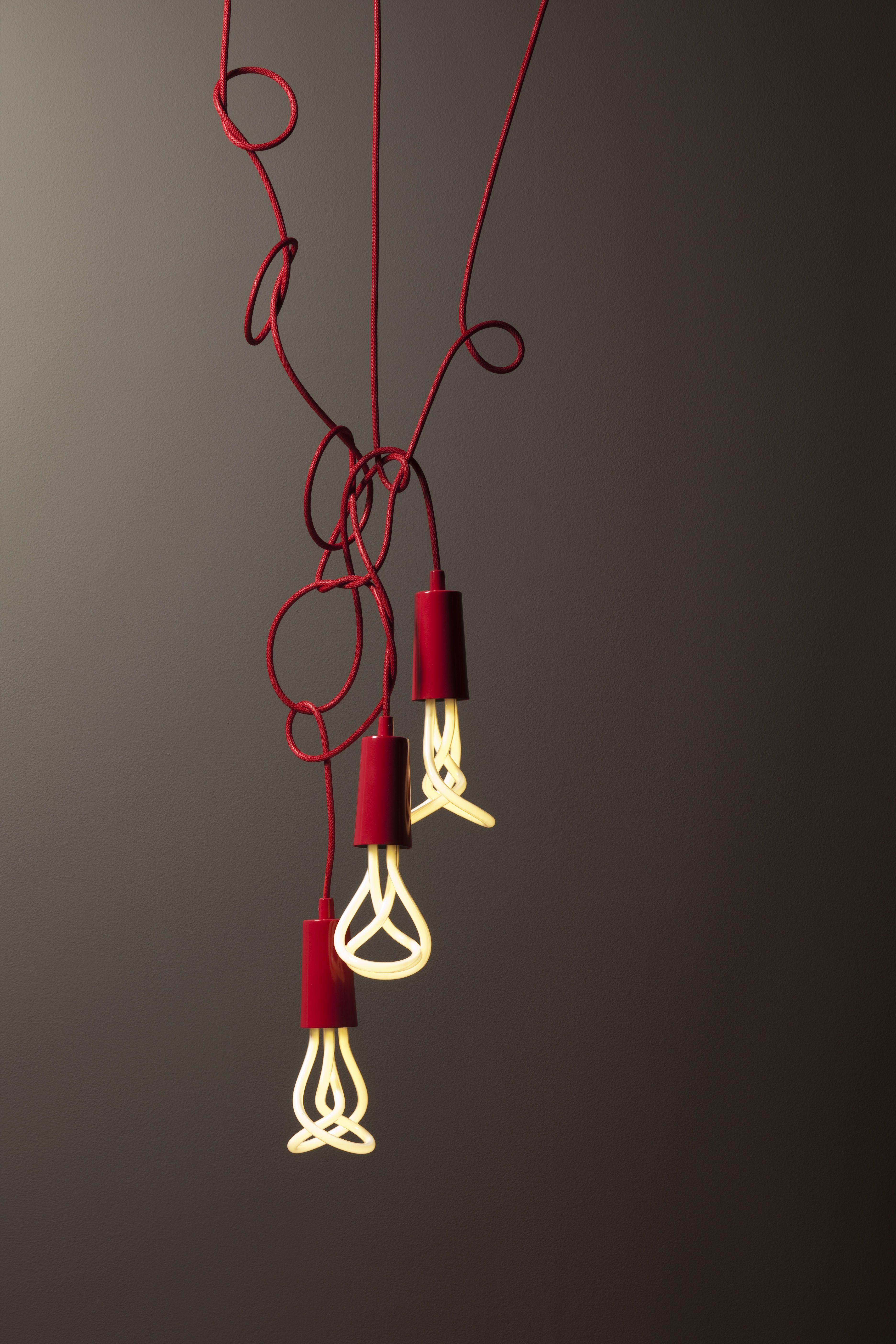 Pin by studiobear sophiebicknell on illuminate design