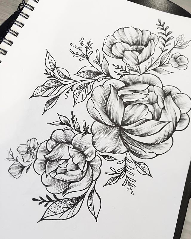 Peonies Sketch Linework Dotwork Eightlines Twofloors Peony