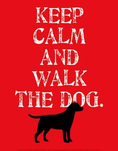 Keep Calm Labrador Prints By Ginger Oliphant Dog