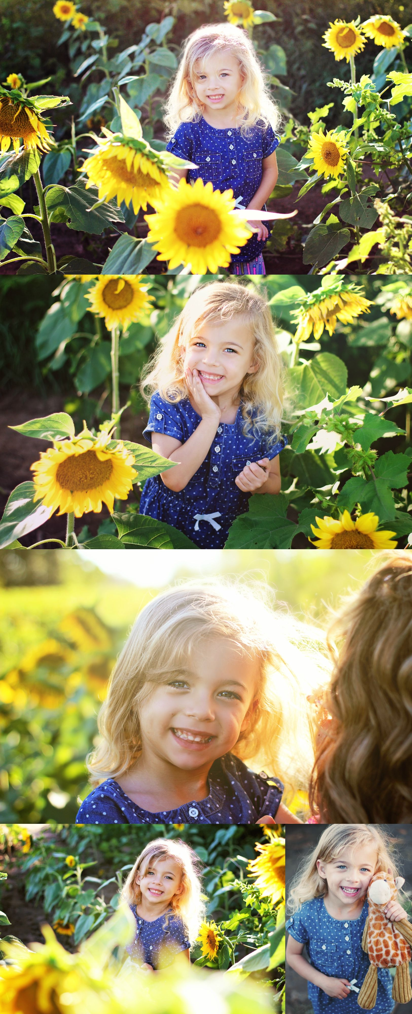 Sunflower Field Photography   Mother and daughter photo ...