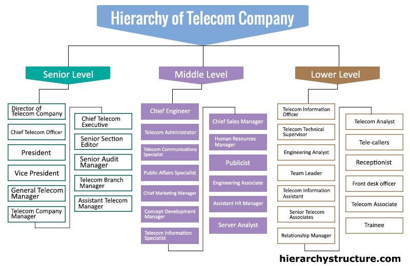 Hierarchy Of Telecom Company Research Stuff Jobs