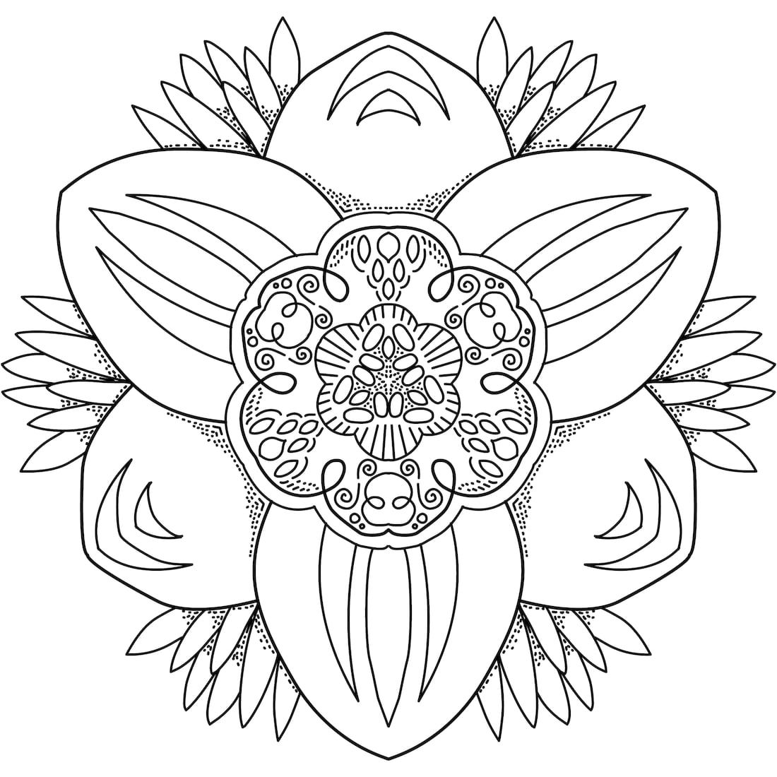 Mystery Orchid Coloring Page Coloring Pages Adult Coloring