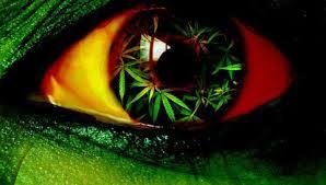 марихуана часто является