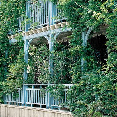La Maison du Bassin, Cap Ferret, France all things Francais - location vacances belgique avec piscine