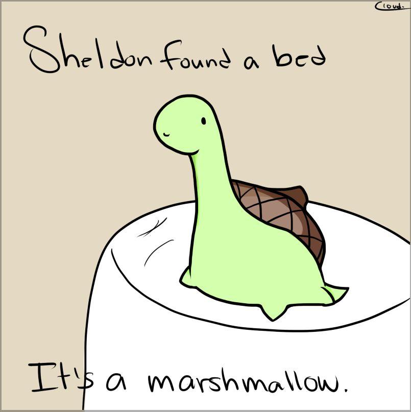 Sheldon The Tiny Dinosaur Sheldon The Tiny Dinosaur Tiny Dinosaur Turtle Dinosaur