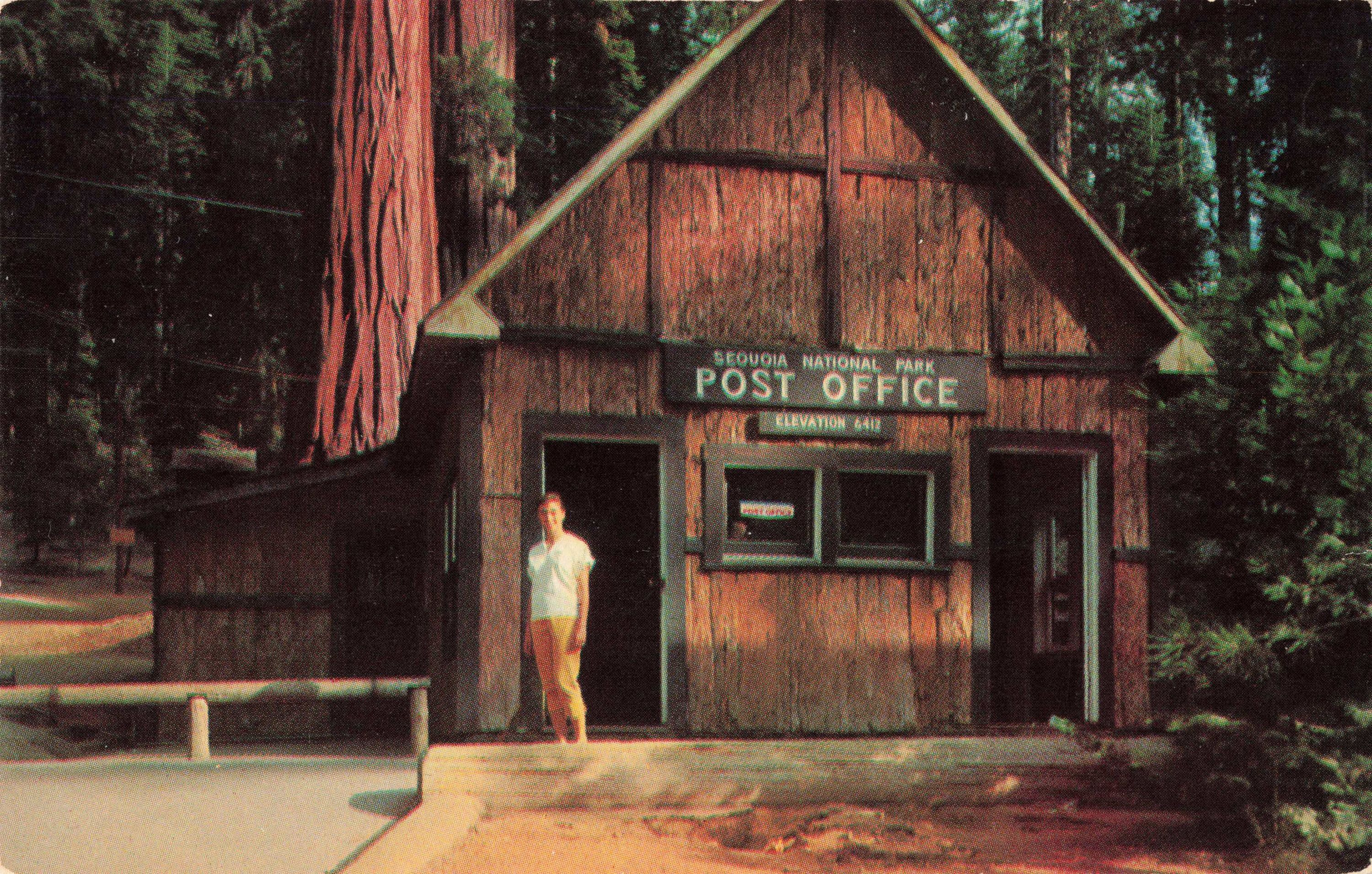 Postcard Giant Forest Post Office California In 2020 Post Office