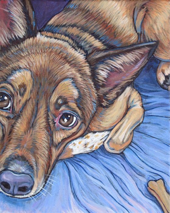 Grace the Australian Cattle Dog Mix Pet Portrait Painting in Acrylic Paint on…