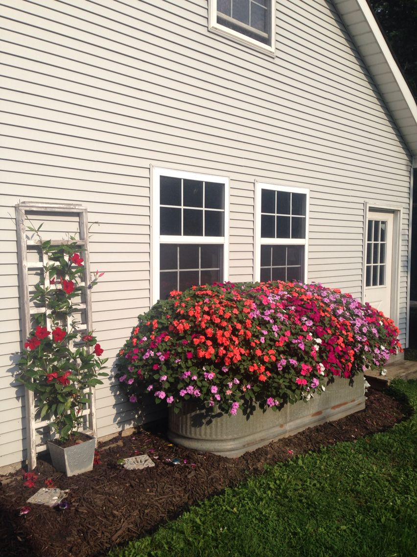 Impatiens Planted In A Horse Trough Landscaping