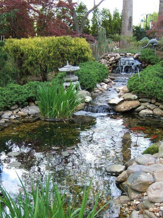 A pond and waterfall Jardines Pinterest Estanques, Jardín y - Cascadas En Jardines