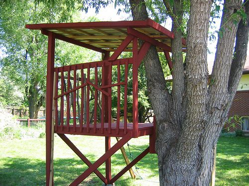 kid tree house designs | Treehouse Pictures in Colorado | TreeHouse Colorado