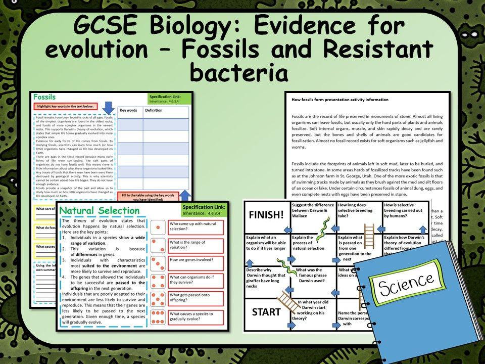 AQA GCSE Biology (Science) Evidence for Evolution