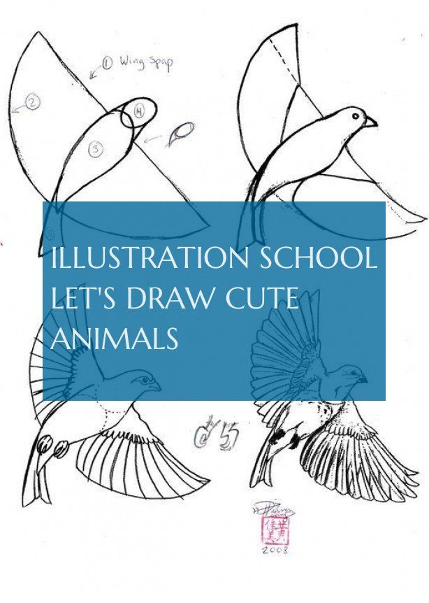 École D'illustration Dessinons Des Animaux Mignons Illustration School Let 39 S Draw Cute Animals