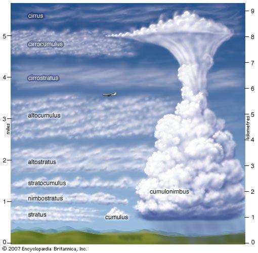 Link Not Found Tipos De Nubes Ciencias De La Naturaleza Tiempo Y Clima