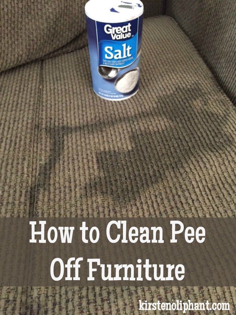 Schoonmaaktips Voor Tapijt This One Kitchen Item Will Clean Pee Off Furniture Carpets