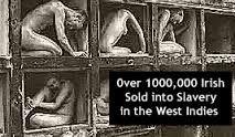 Image result for irish slavery