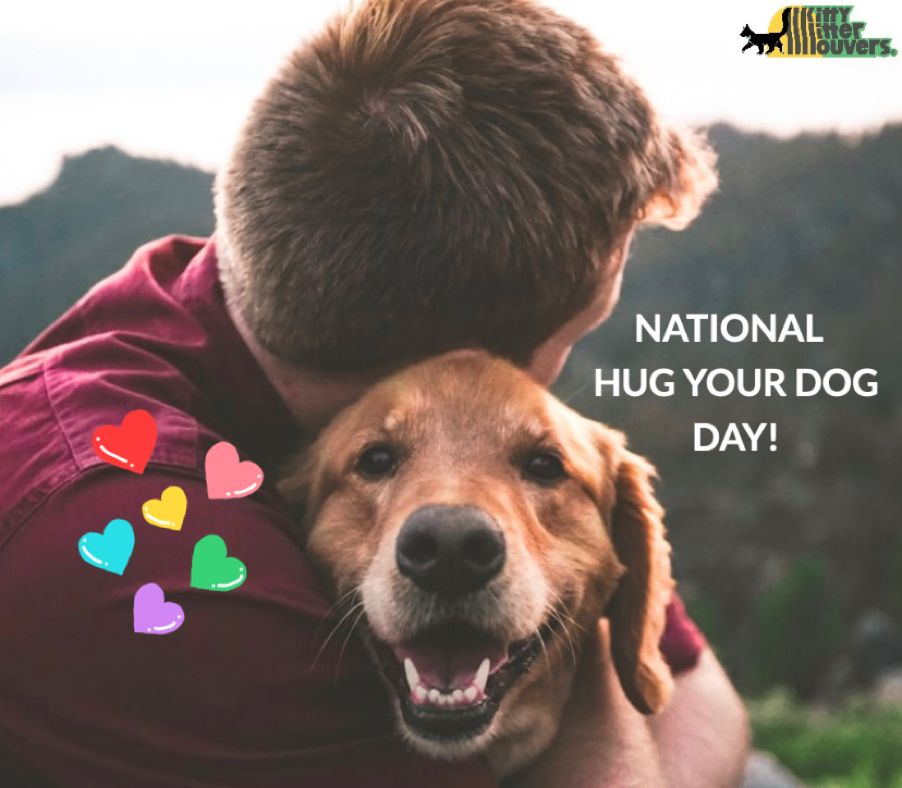 National Hug Your Dog Day! 🐾🐾 nationalhugyourdogday pets