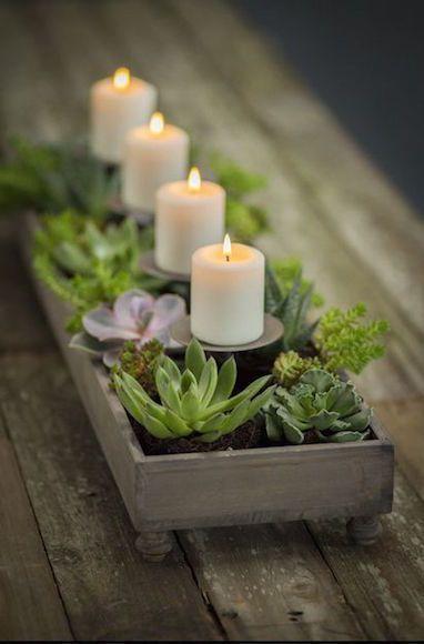 Suculentas e velas - Montar Arranjos Criativos para Centro de Mesa ... 847bdf49122