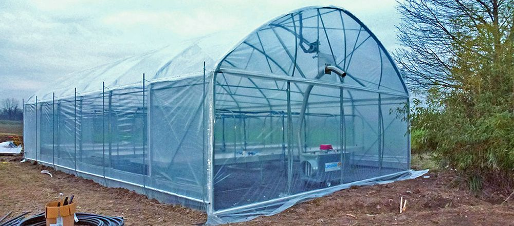 Occasioni serre usate irrigazione bancali offerte for Serre professionali usate
