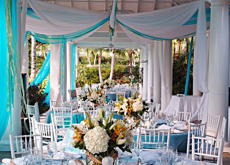 17 Best Images About Rush Ideas On Pinterest Recruitment Themes Phi Mu  Alpha And Greek Life. Tiffany Blue Wedding Supplies
