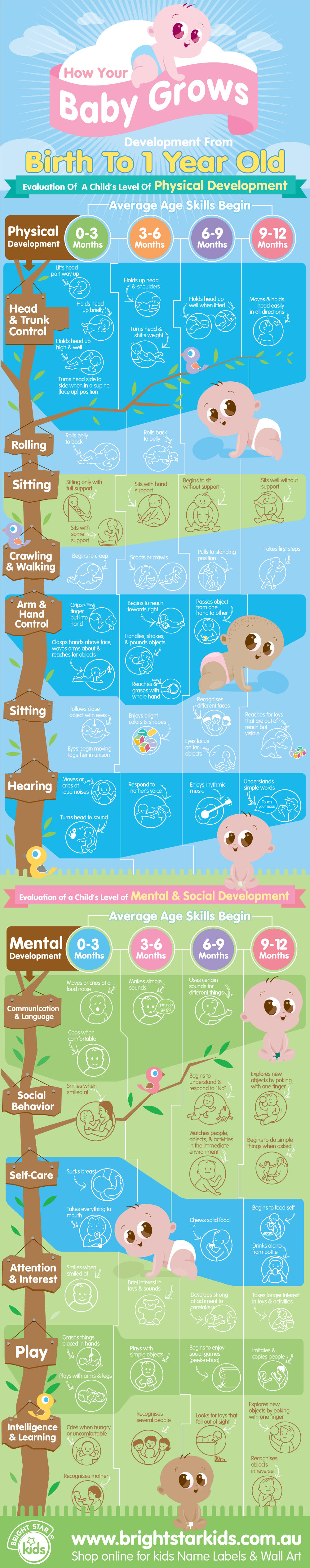 Baby Development   Months Infographic And Change