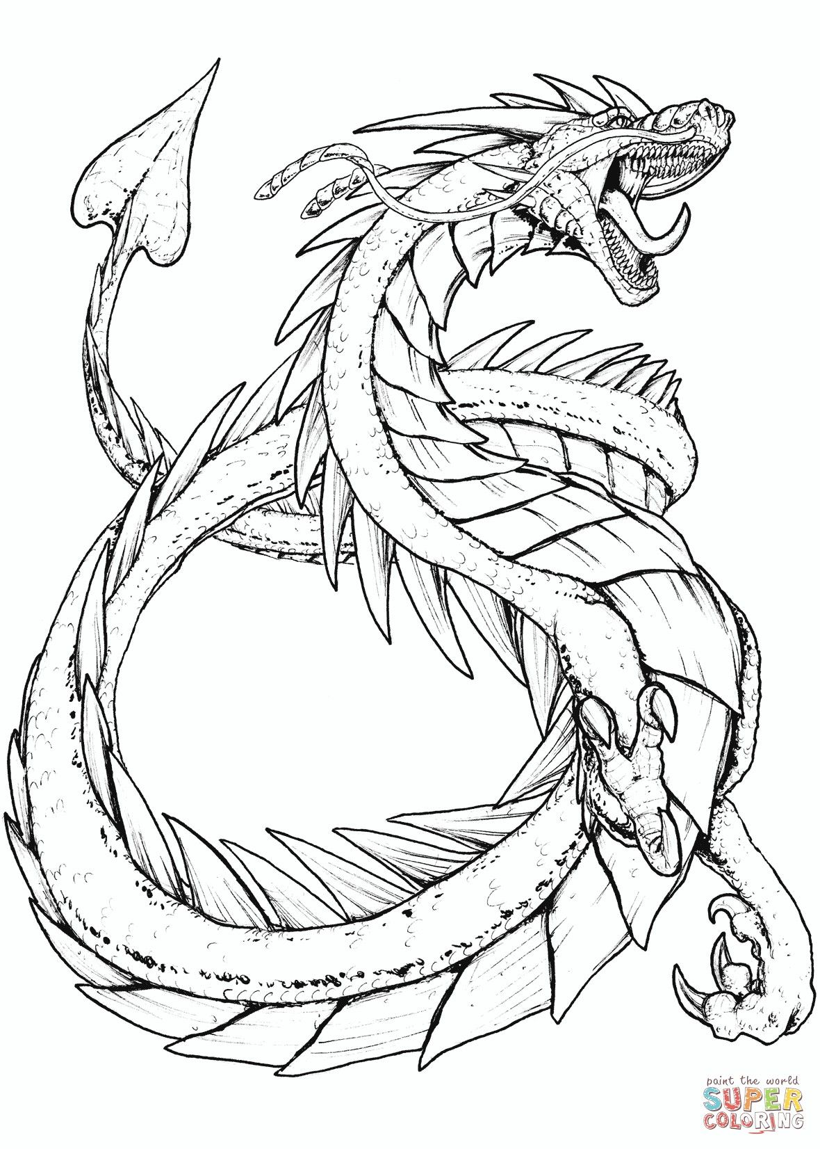 Free Printable Coloring Pages Of Dragons From The Thousands Of Photos On The Internet In Relat Dragon Coloring Page Mythical Creatures Drawings Dragon Sketch