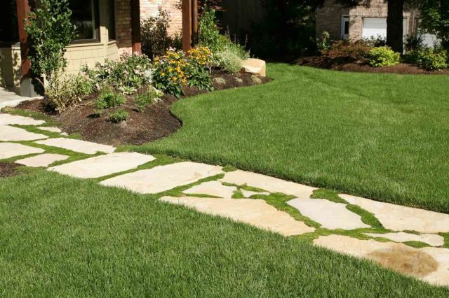 10 Ways To Make Your Yard Look Professionally Landscaped Backyard Landscaping Landscape Design Cheap Landscaping Ideas