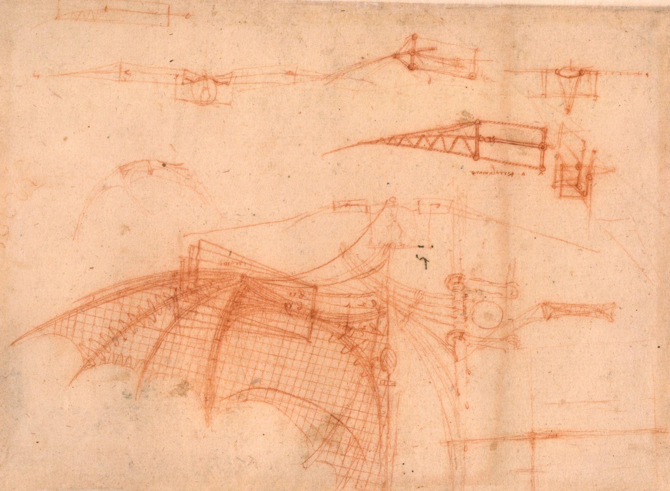 Contour Line Drawing Leonardo Da Vinci : Drawing of a mechanical wing by leonardo da vinci circa
