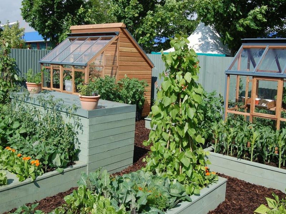 Modren Backyard Vegetable Garden Design Full Size Of Small Ideas