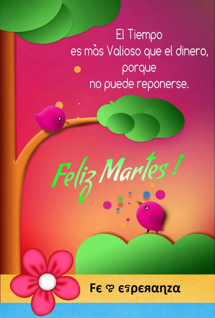 Feliz Martes | Feliz martes frases, Feliz martes, Imagenes de ...