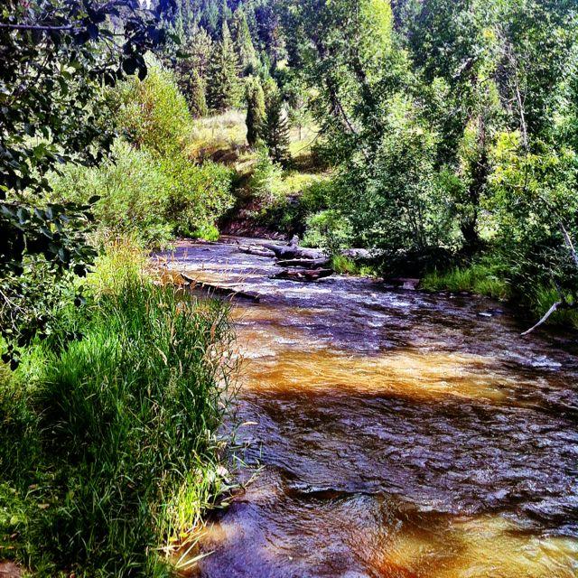 Denver Kayaking: Hiking In Evergreen, Colorado :-)