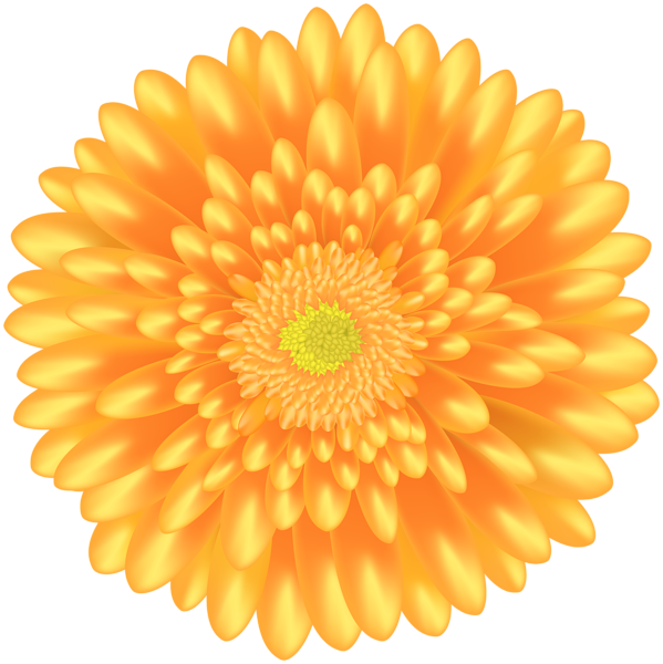 Orange Flower Png Clip Art Clip Art Orange Flowers Flowers