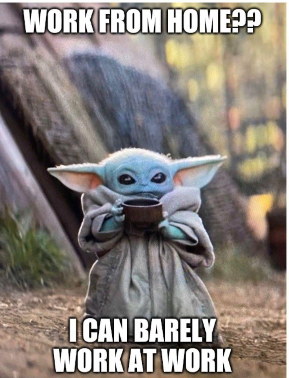 Pin By Bopley Sun Star On Baby Yoda I Don T Even Like Star Wars Yoda Funny Yoda Meme Star Wars Humor