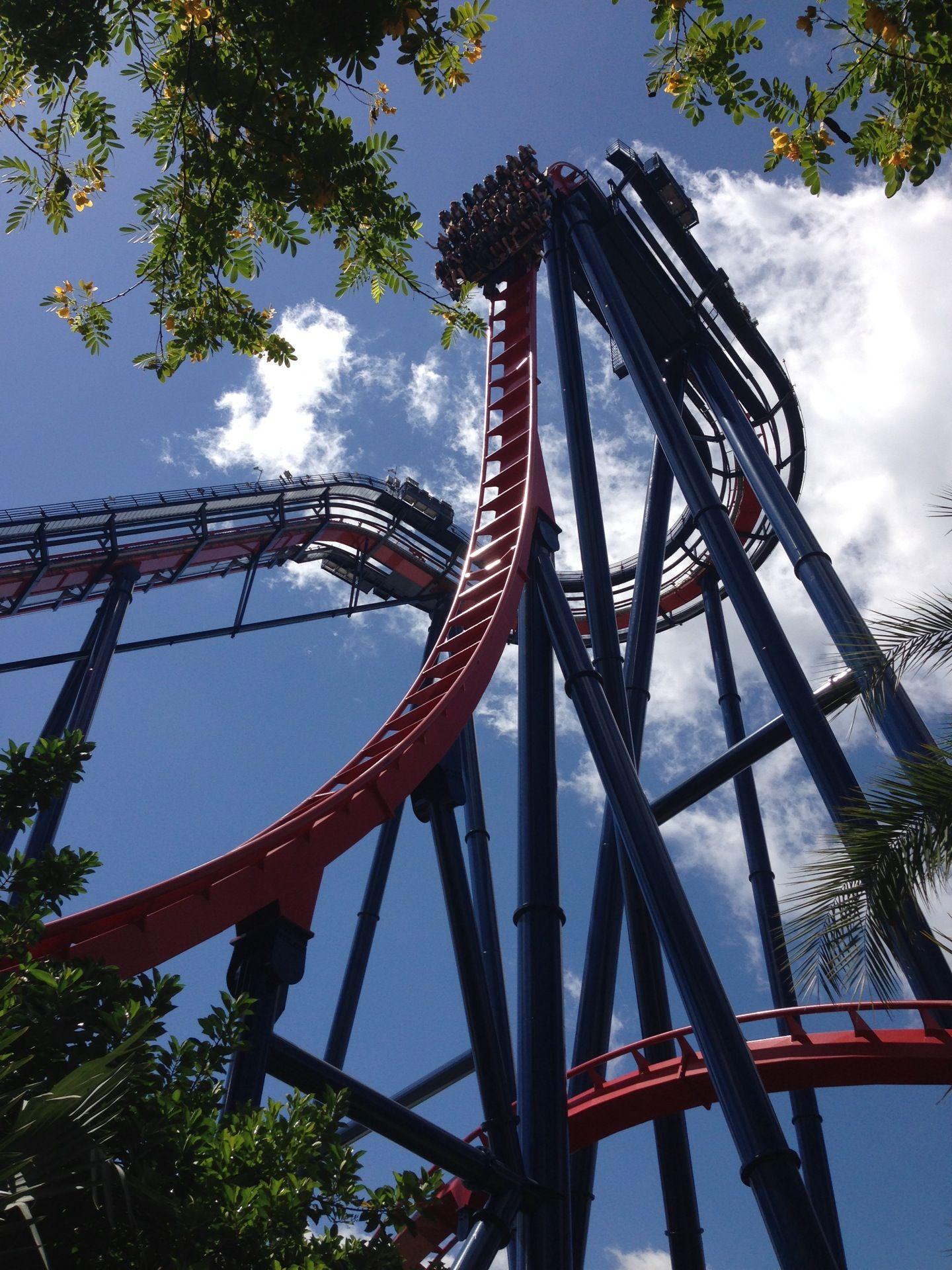 4b112e090822869812ab9e0f04853a54 - Busch Gardens Tampa Drop Off Area