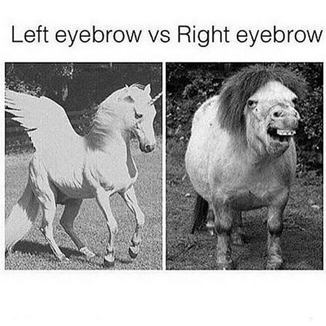 left-right-eyebrow-dont-same