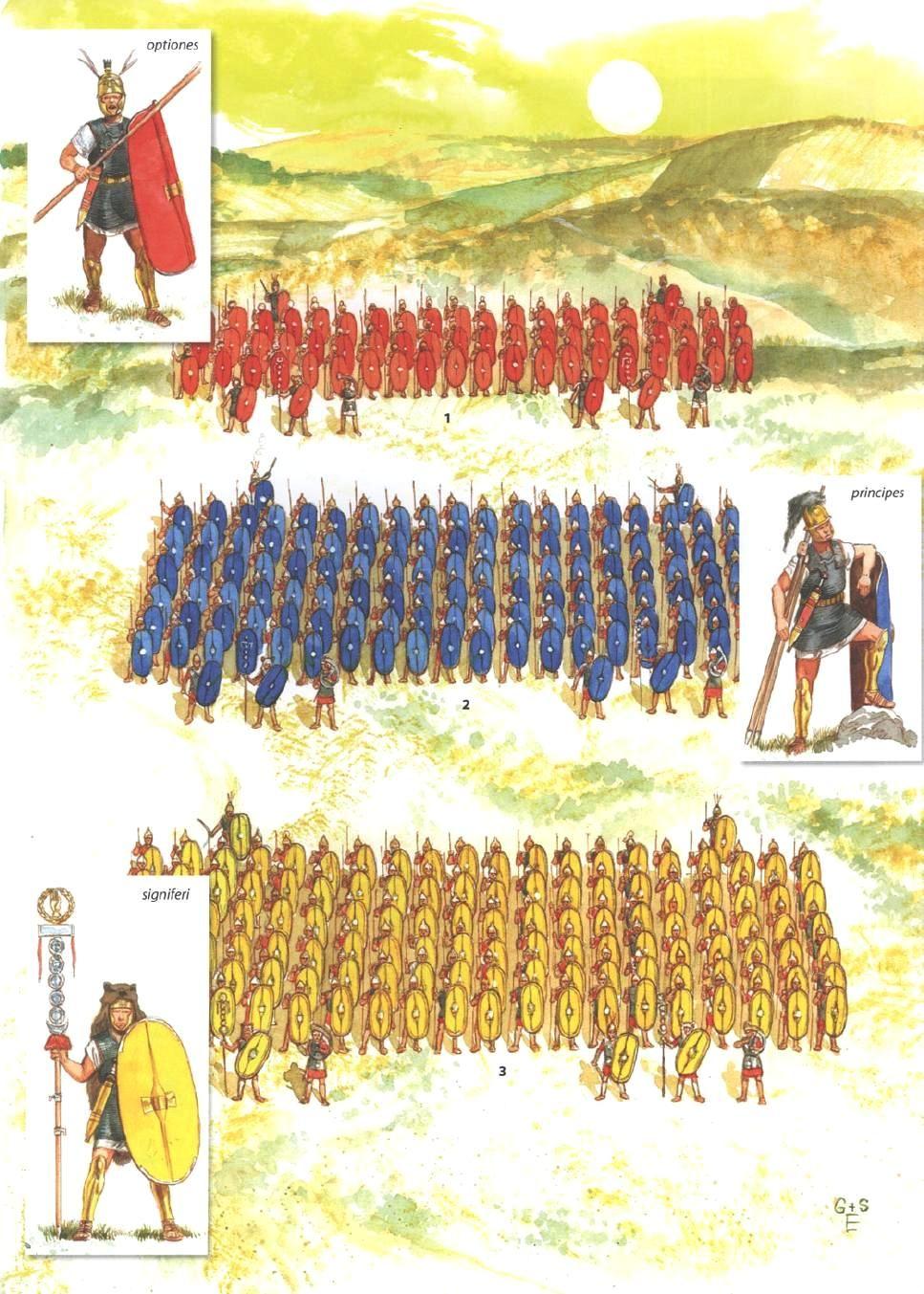 Roman battle tactics.   tactics and gear   Pinterest   Posts and Roman