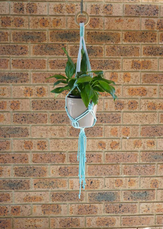 Macrame Plant Hanger. Indoor/Outdoor Pot Holder. Features white polyester cord, dyed a gradual pastel teal colour using ombre effect. Hung from a pine wood ring. Measures 85cm in length.