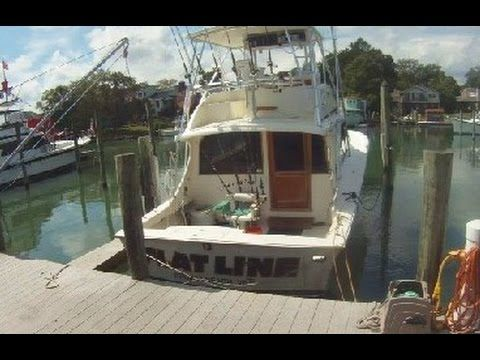 Aquaman Fishing VA Beach - Tom's Fishing Channel | Fishing ...