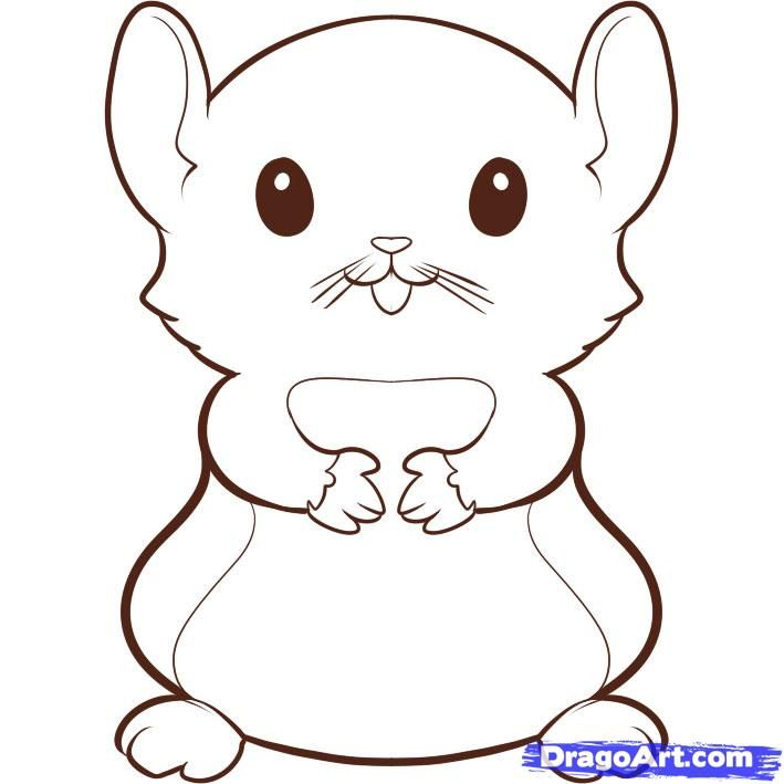 How to draw a hamster - Hundreds of drawing tuts on this site ...