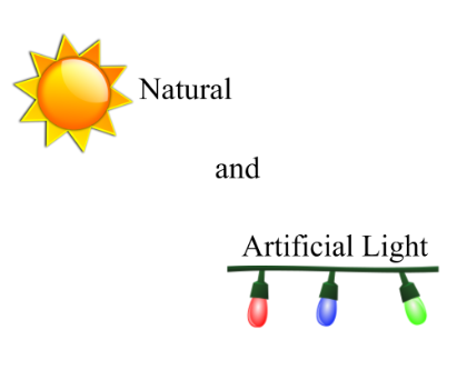 """Image result for natural and artificial light"""""""